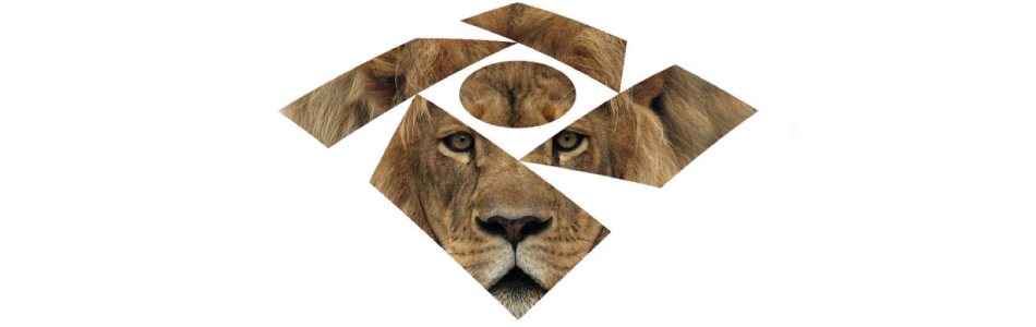 Você sabe porque o Leão é o símbolo do Imposto de Renda?
